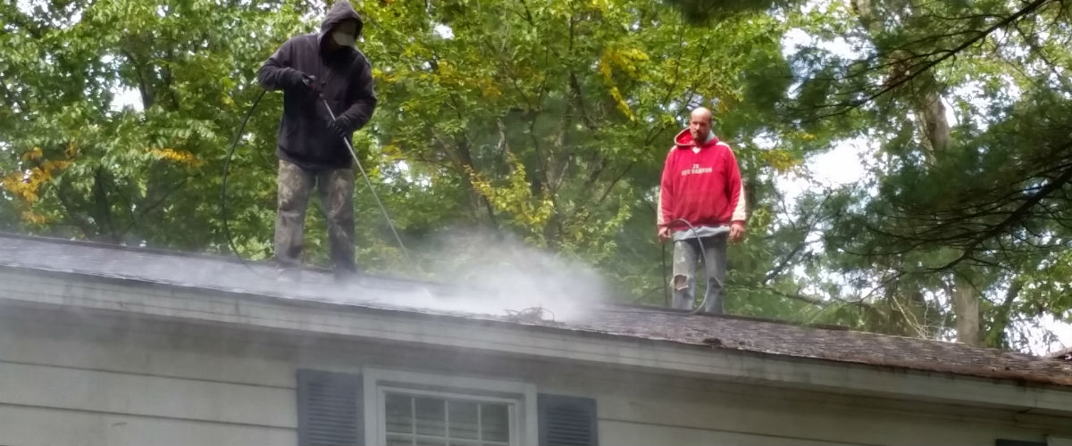 Service Solutions Roof Cleaning 168